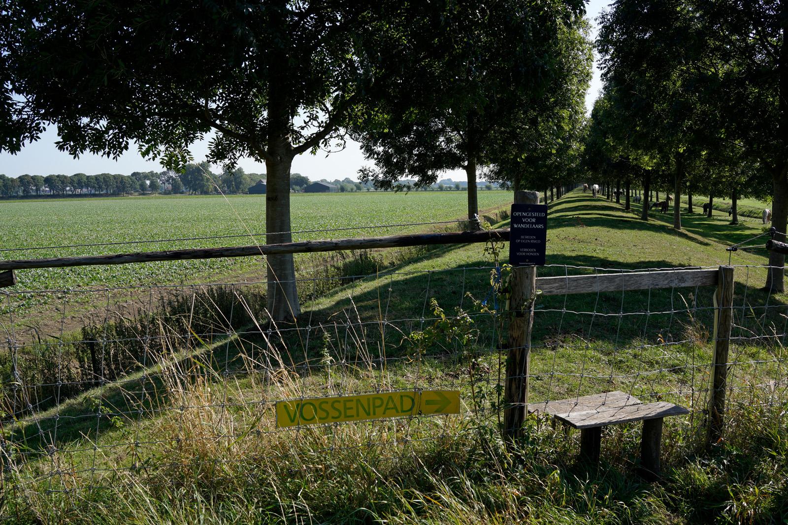Vossenburg Paarden