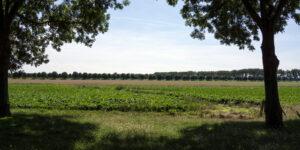 Essendijk