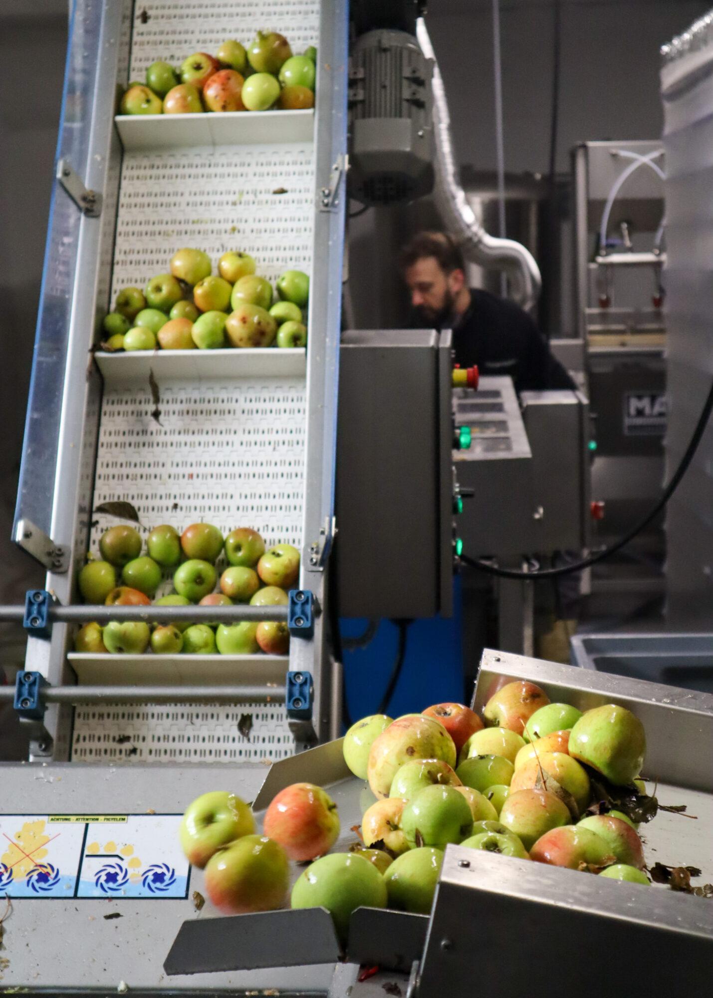 Appels persen